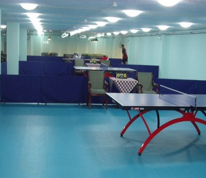 乒乓球地胶1