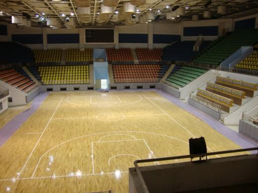 Indoor basketball court absolute force for Indoor basketball court price